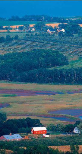 canada hills