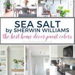 Best Home Decor Paint Colors Sherwin Williams Sea Salt