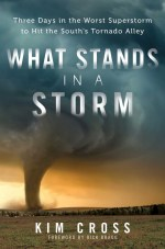 what-stands-in-a-storm