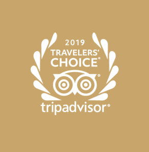 Tripadvisor badge brown
