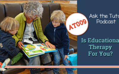 AT 009:  Is Educational Therapy For You?