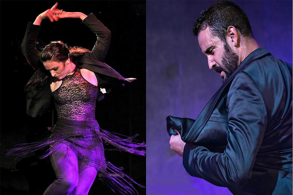 Forever Flamenco-1000