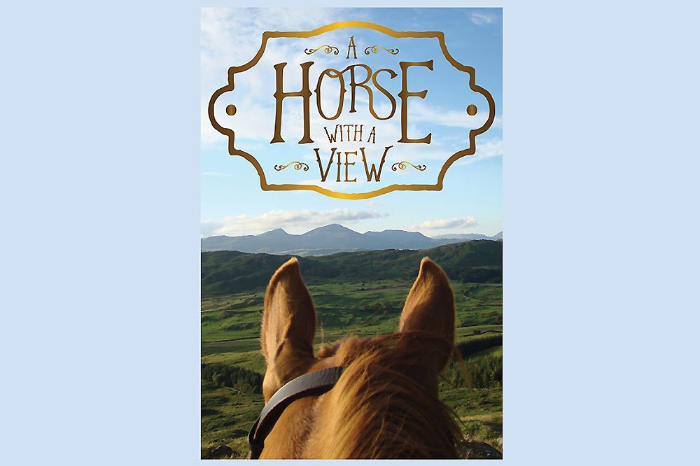Horse With A View-1000