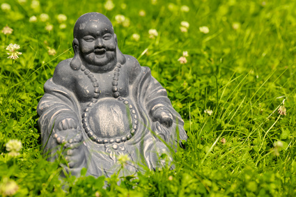 The different reasons for bloated aka 'Buddha bellies' on