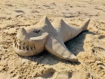 Bux Shark