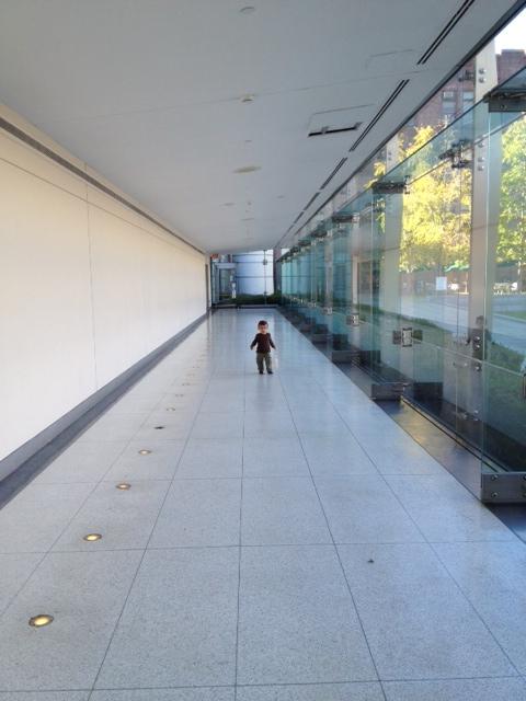 ben amnh hallway