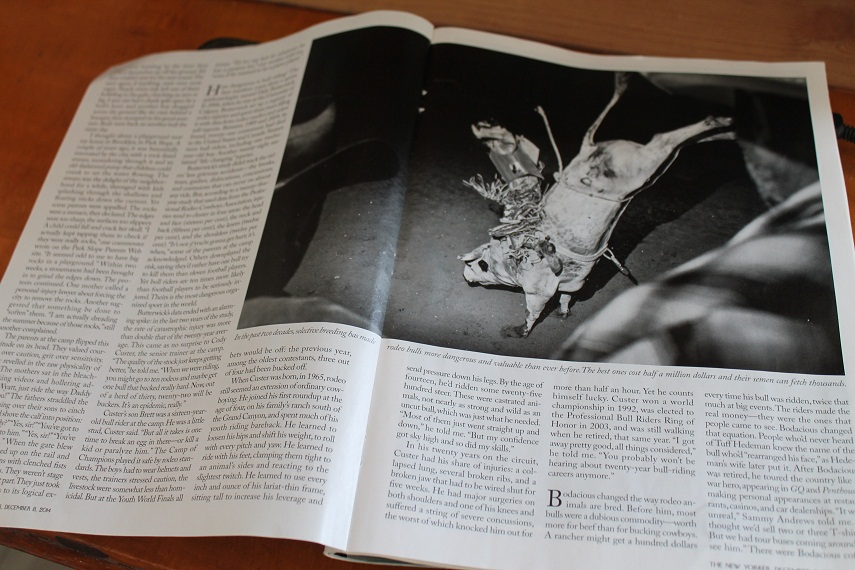 A photo of the article I read.