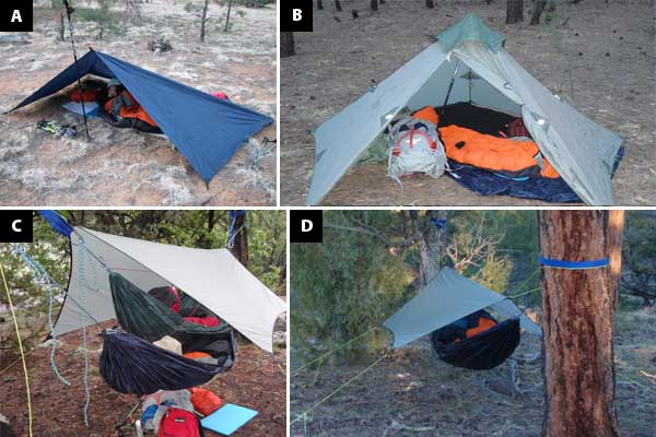 Grand-Trunk-Hybrid-Hammock-Configurations