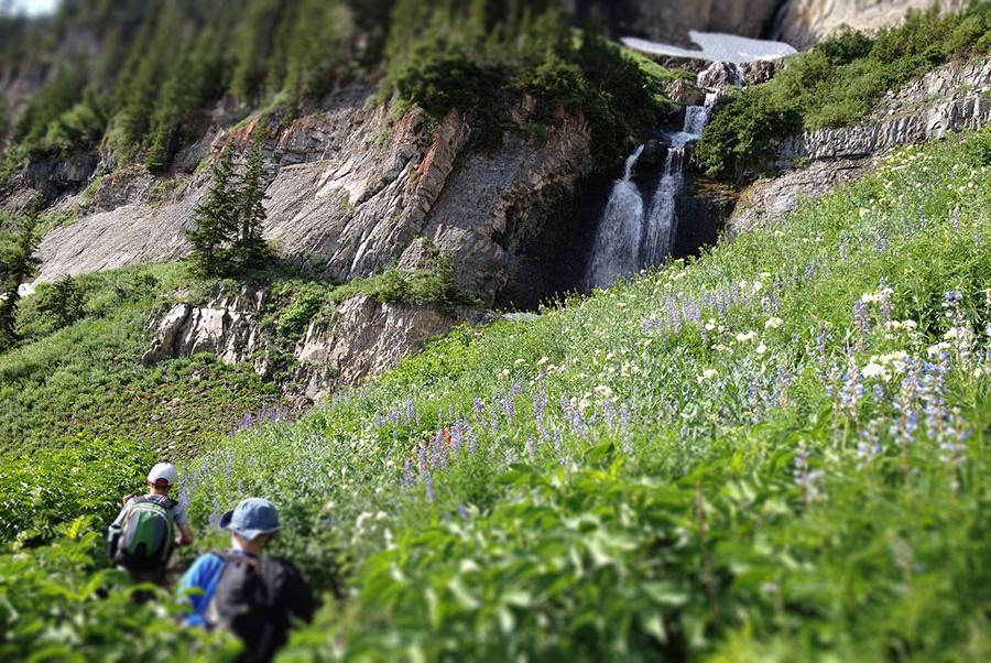 timp-waterfalls
