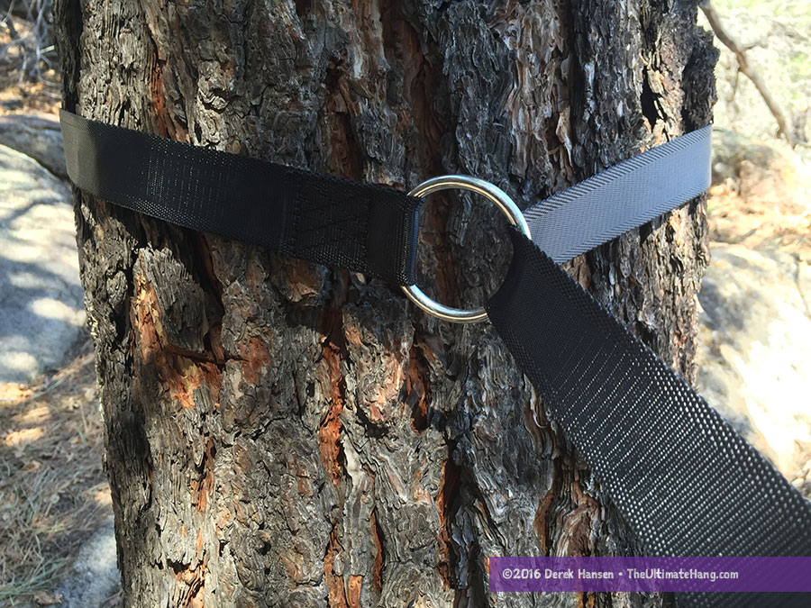 ox-straps-around-tree