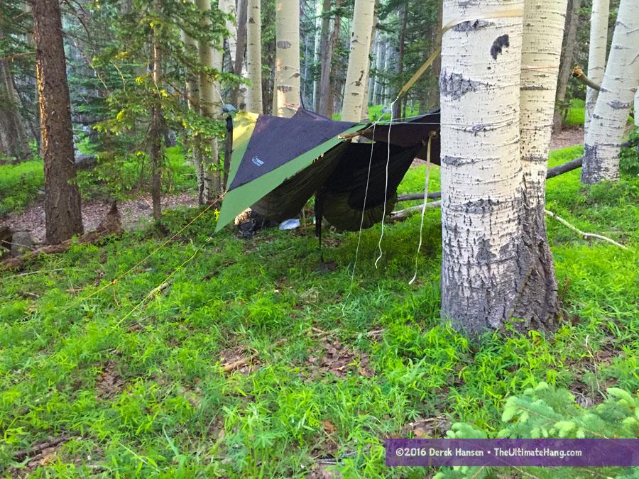 hammock-50-miler-2016-4