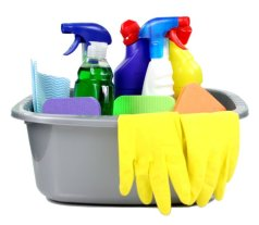 bucket of cleaning supplies-md
