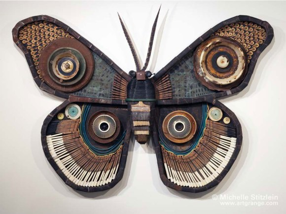 Moth10web Michelle Stitzlein 8217 s Butterflies amp Moths