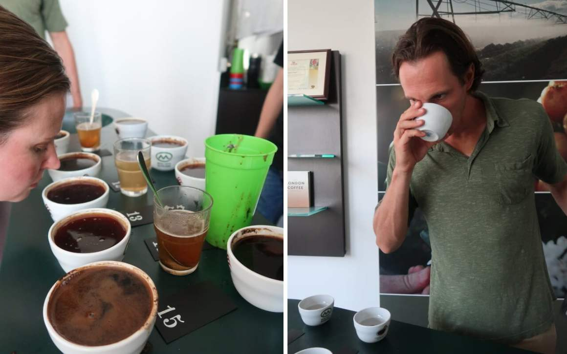 Smelling coffees prior to taste tasting
