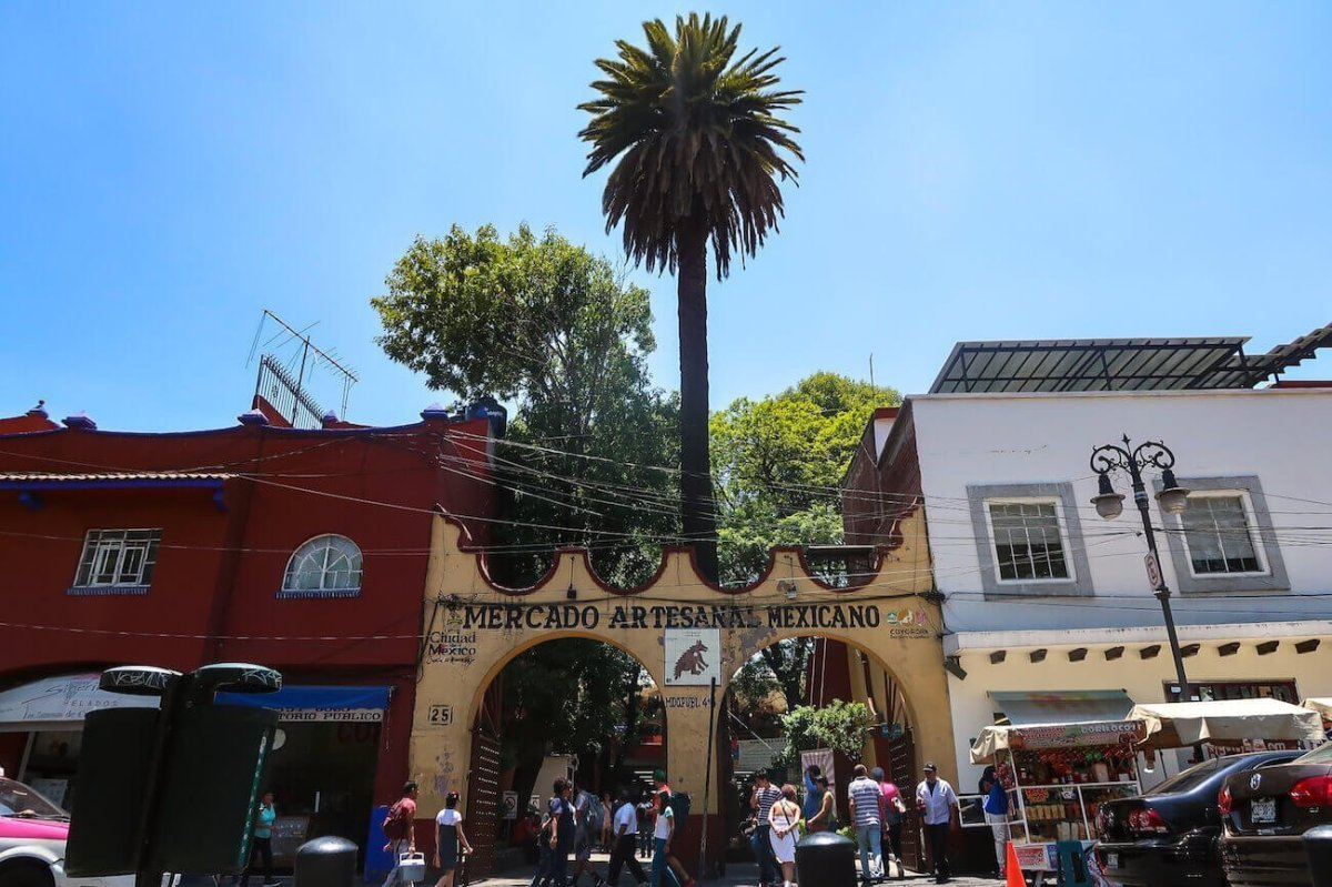 Buildings and palm tree in Coyoacan