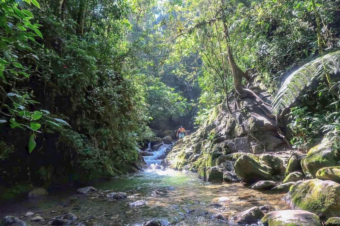 Chris walking through jungle below Chorro Campanas in Envigado