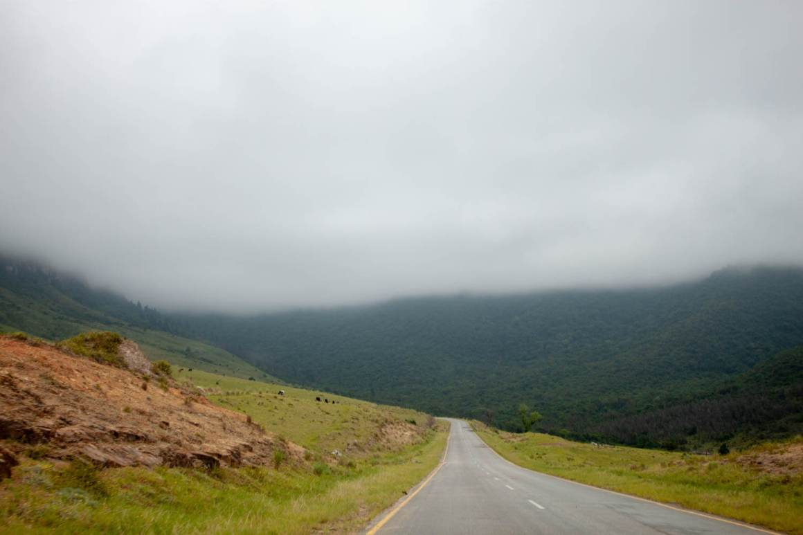 Highway heading to Hogsback with clouds and forest ahead
