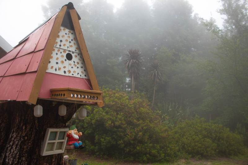 Things to do in Hogsback cover image of a gnome home and misty forest