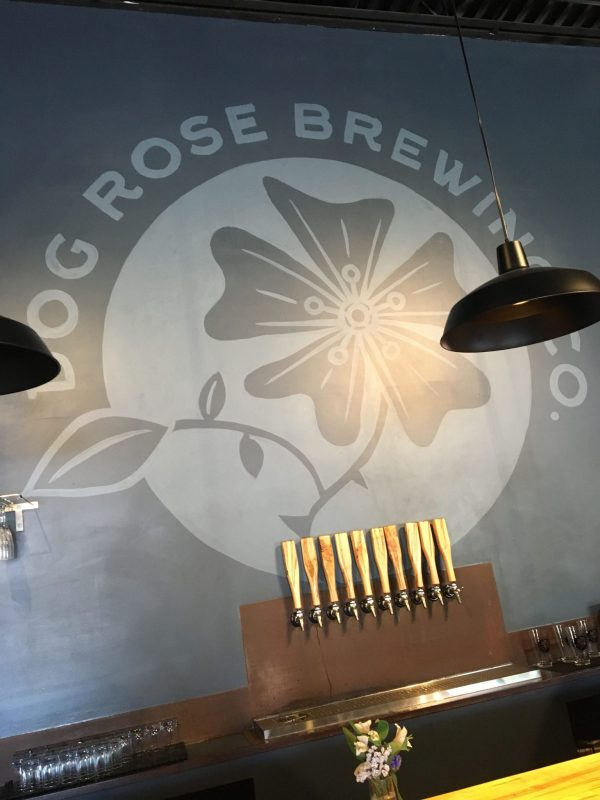 Beer tasting at Dog's Rose Brewing
