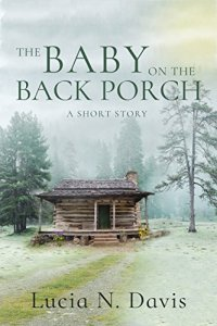 Baby on the Back Porch by Lucia Davis book cover