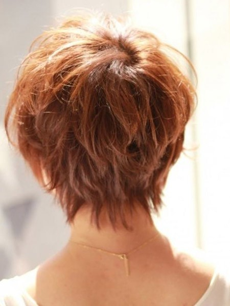 Long-Layers Back View of Short Haircuts