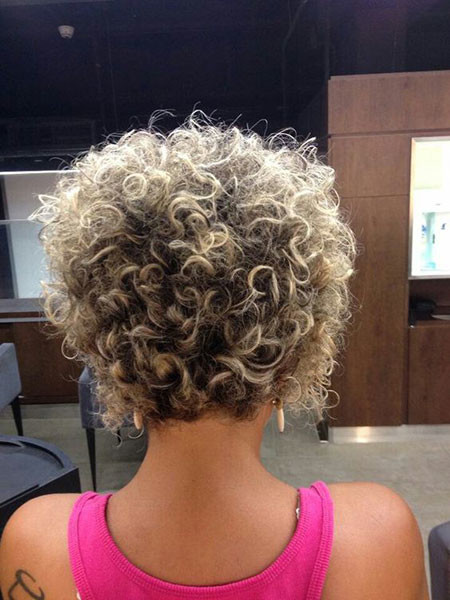 Short-Curly-Hair-Back-View Popular Short Curly Hairstyles 2018 – 2019
