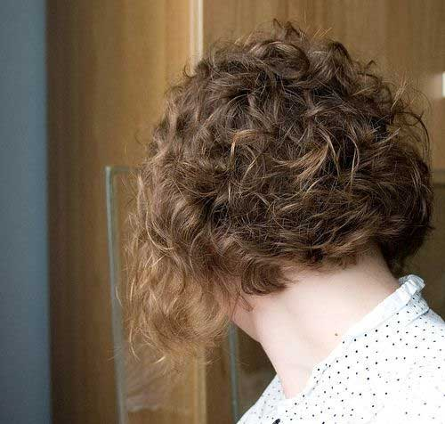 Nice-Short-Curly-Bob-Hairstyle Best Bob Cuts for Curly Hair