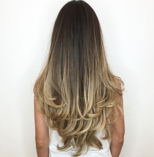 Long-Dark-Hair-with-Blonde-Contour-Balayage 12 eye-catching longhair style