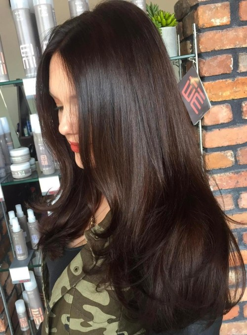Glossy-Hair-with-Subtle-Layering 14 gorgeous Hairstyles and Haircuts for Long Straight Hair