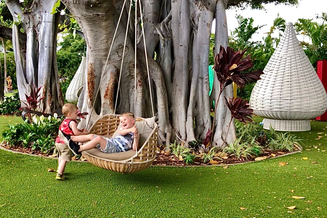 Tree swings at the Wailea Beach Resort by Marriott