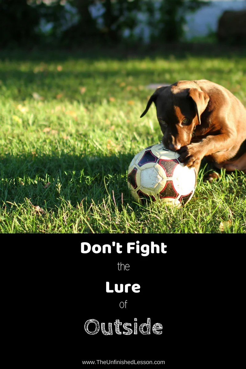 Don't fight the lure of outside ... move lessons there!
