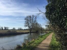 cambridge morning run - 1 (4)