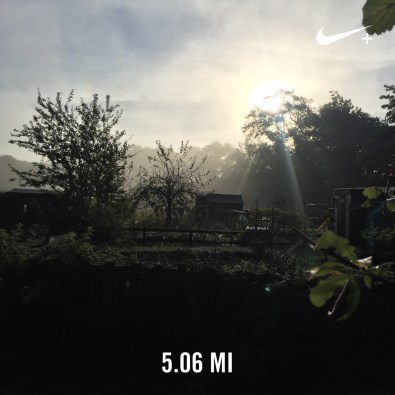 2016-running-1