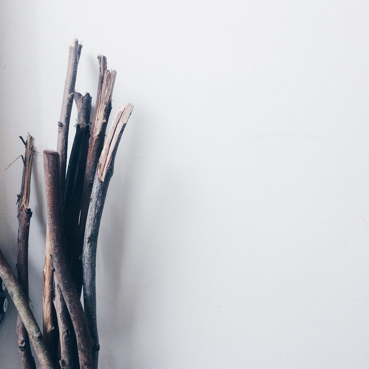 Camino Walking Sticks do you need them?