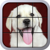 Puppy Tiles