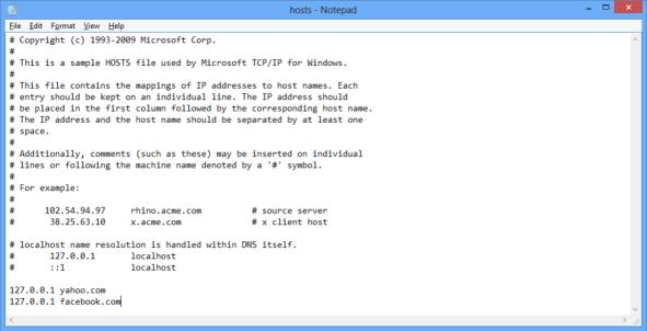 Edited Hosts File