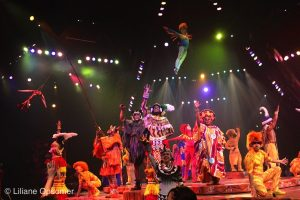 Animal Kingdom Shows