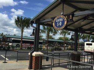 New Transportation Hub Disney Springs