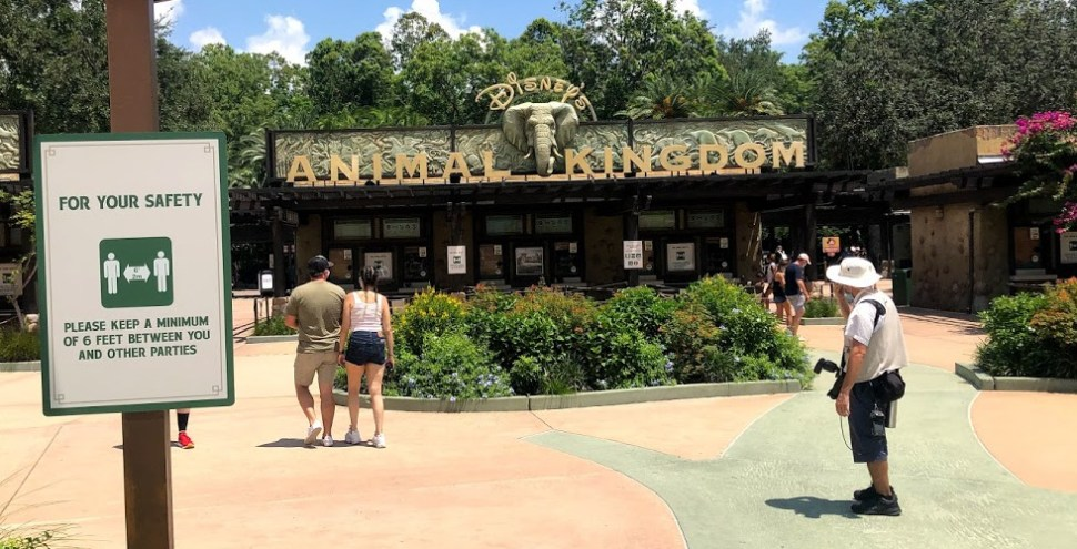 Disney's Animal Kingdom reopened social distancing featured