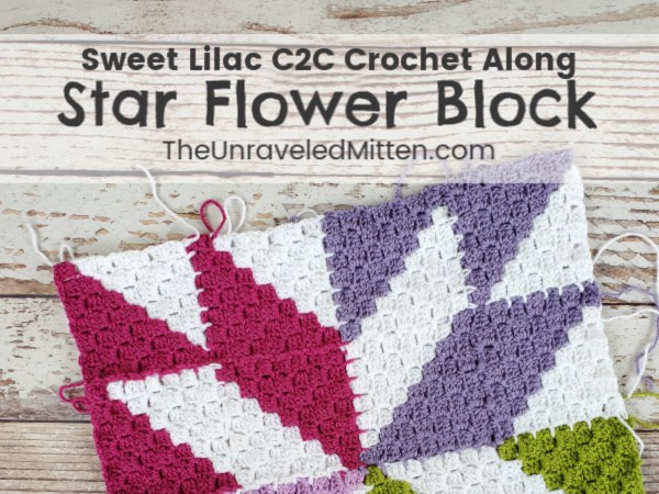 Star Flower Block | C2C Quilt Inspired Square