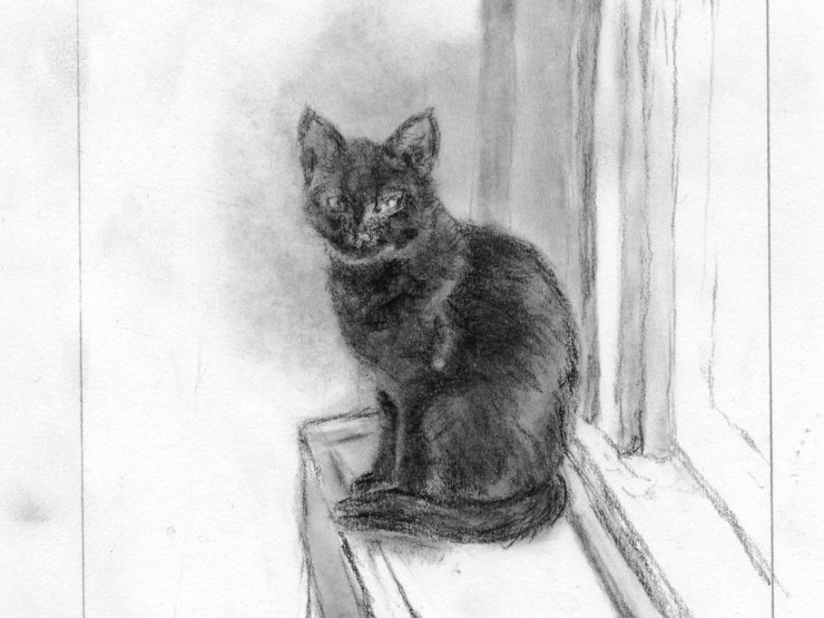"A detail from ""Ella: Muse Cat #1"" by L.S. King. Conté. Part of Drawingpalooza weekend. Finished goal is a drypoint etching."