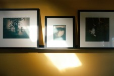 Gum prints by Diana Bloomfield hanging in her Raleigh studio.