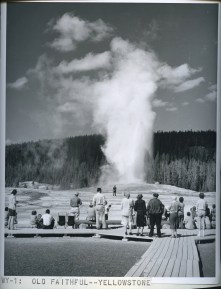 Old Faithful, Yellowstone. 377-C-WY-1