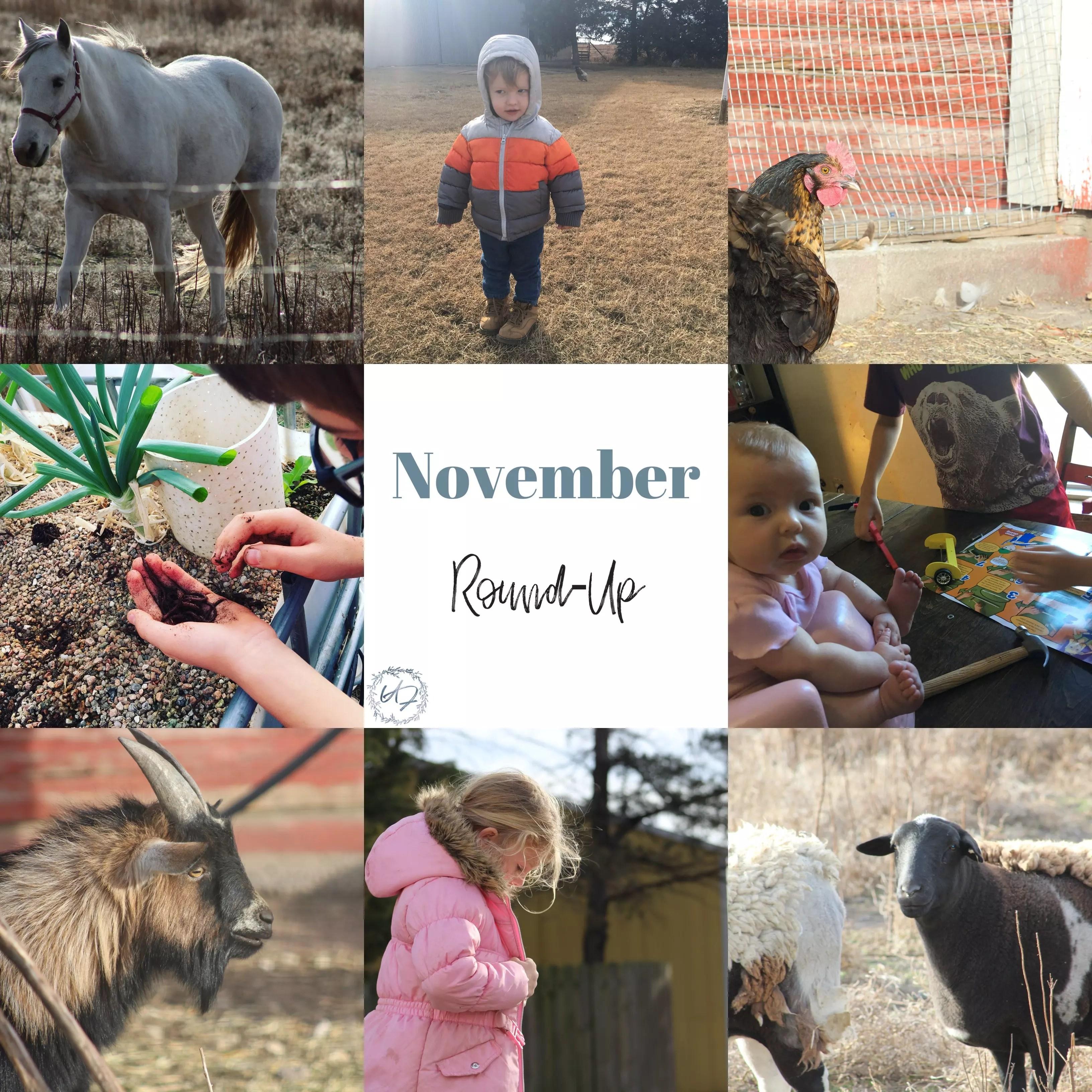 November Round-Up