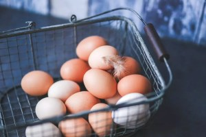 homestead-eggs-basket