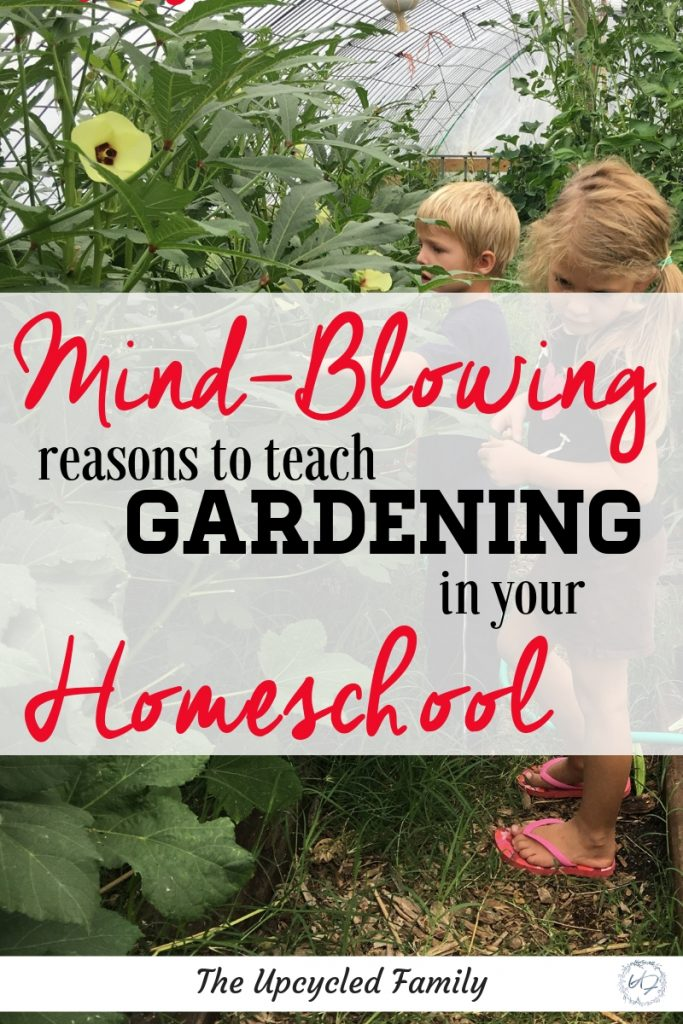 The Mind-Blowing reasons to teach gardening in your homeschool. The benefits of gardening in your homeschool provides young learners with much more than just homegrown food. Homeschool garden learning. #homeschoolgarden #learning #forkids #ideas #tips #grounding #naturelearning