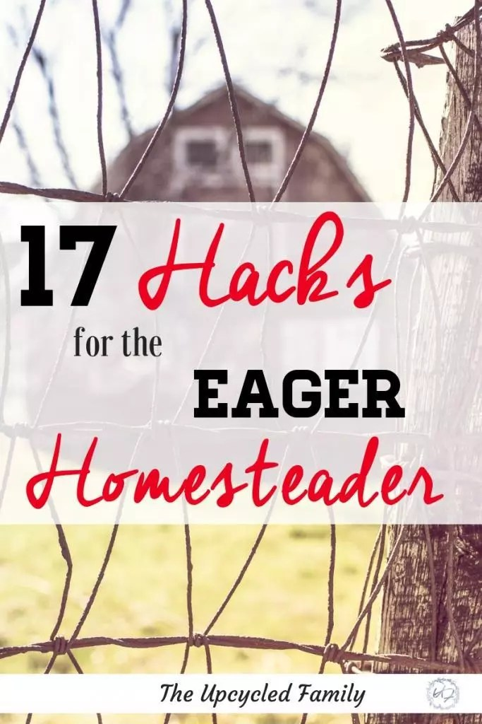 Dreaming about a one day homestead? These 17 homesteading skills are the perfect place to start while waiting to start your homestead. #homesteingskills #homesteadingsskillsforbeginners #homesteadingskillideas #homesteadingideas #frugallivingskills #homesteadingskillstolearn #homesteadingforbeginners #homesteading #urbanhomesteading