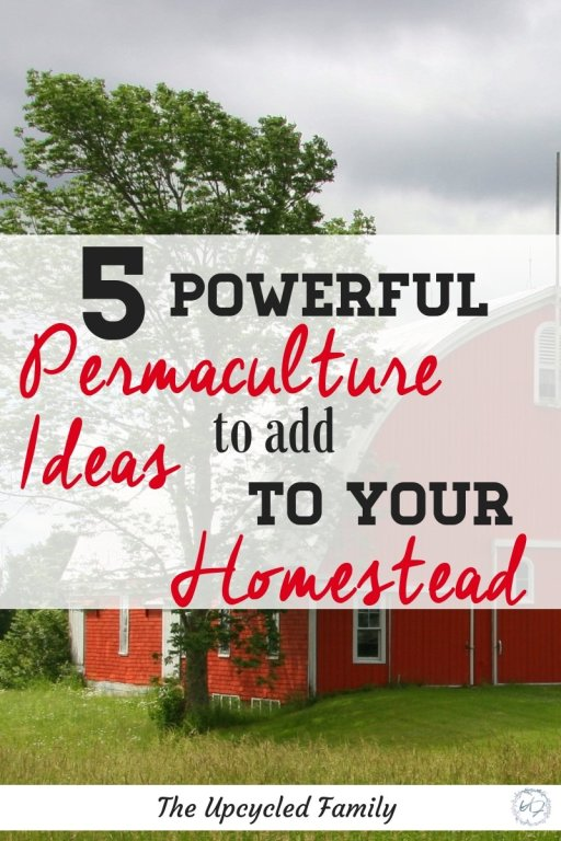 5 powerful Ideas to use on a permaculture farm