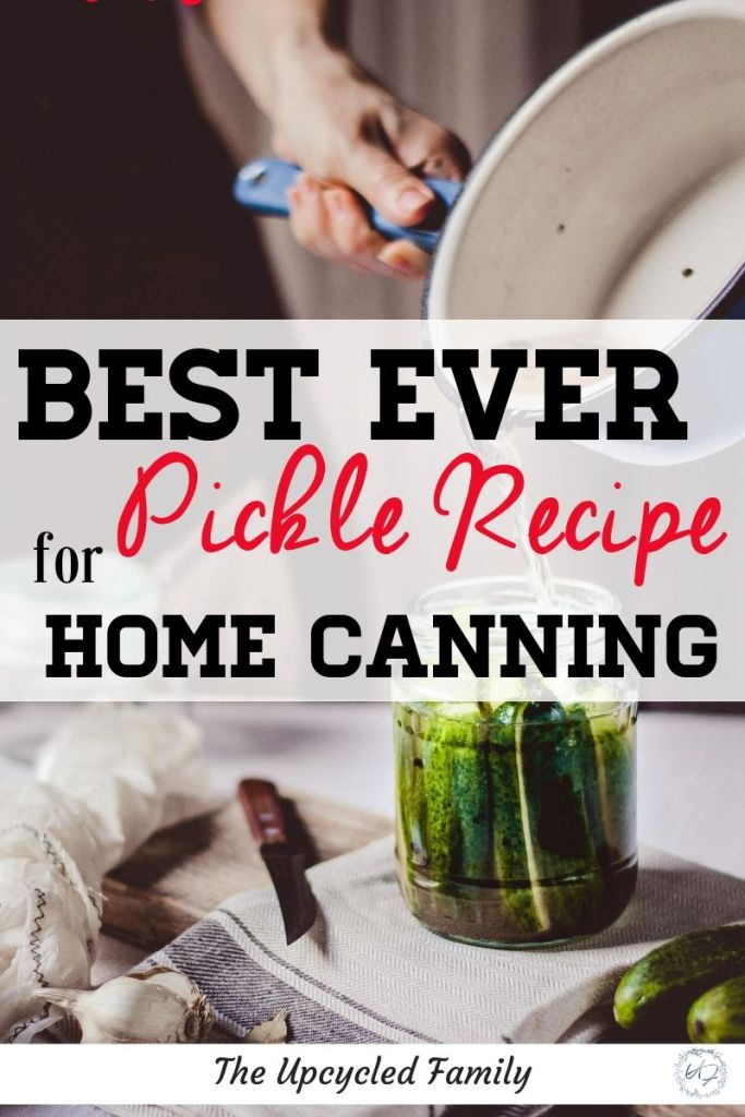 Do you love homemade pickles? This is the BEST ever Pickle Recipe, simple yet oh so delicious! #picklerecipe #canning #dill #easy #howtomake #cucumber #canningrecipes