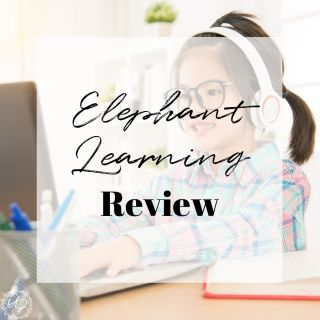 elephant learning math review